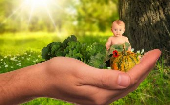 Picture of a child and healthy natural foods