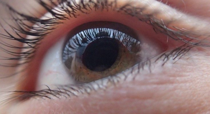 Close up photo of a woman's eye